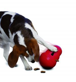 Hundespielzeug KONG ORGINAL