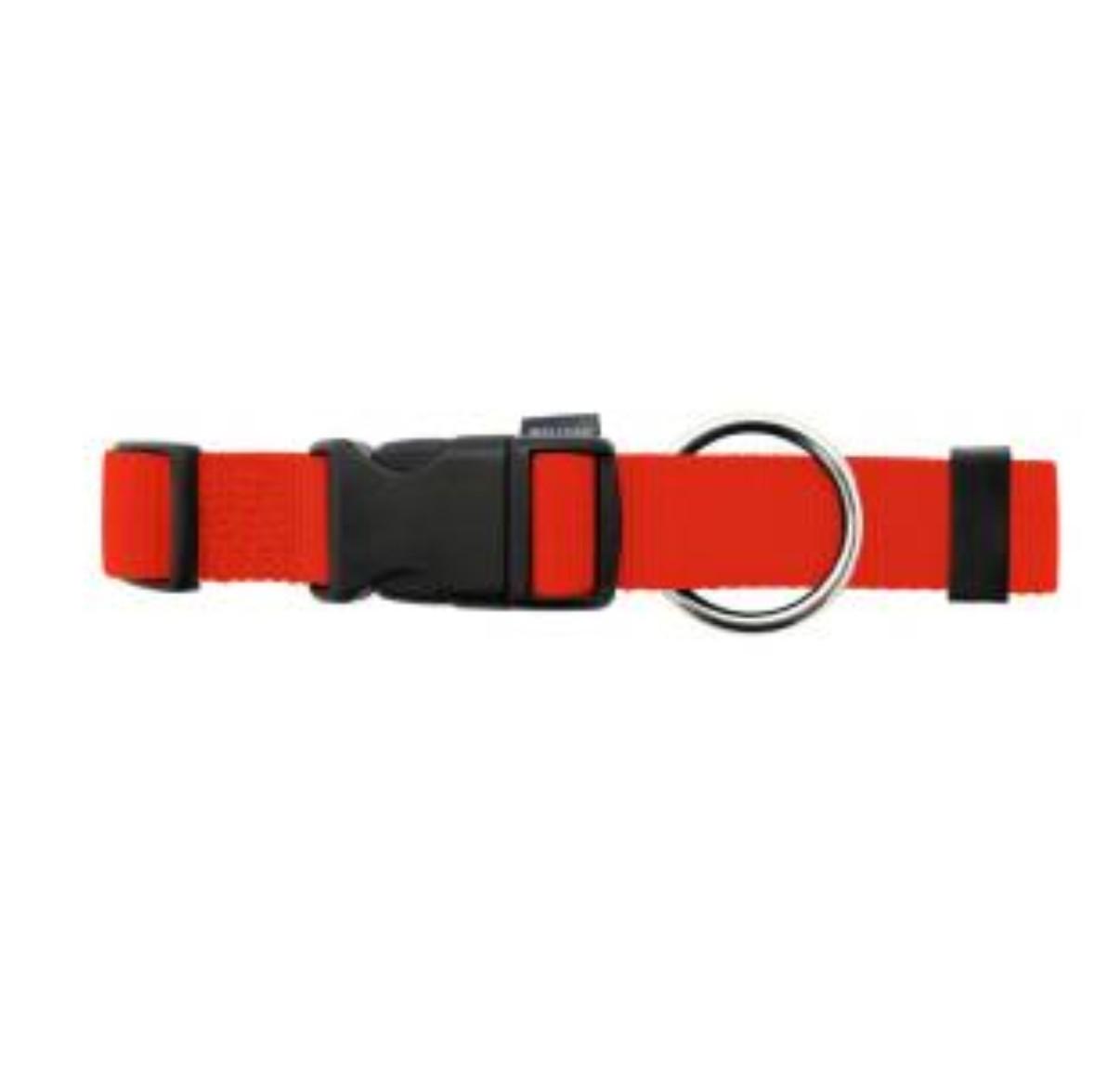 Hundehalsband Basic