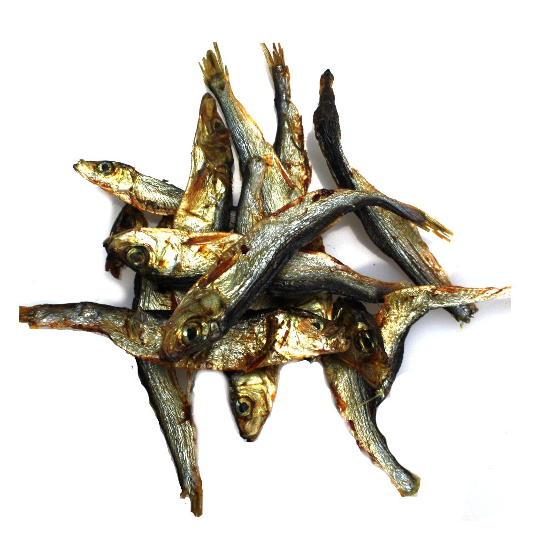 Dog Fisch klein (Sprotten)